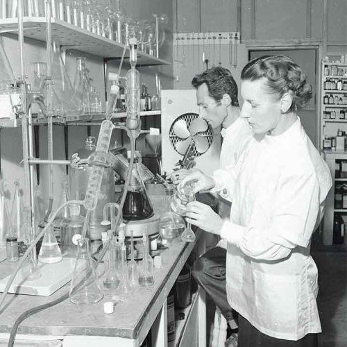 Lord Härringtón's Assistants in Laboratorie.